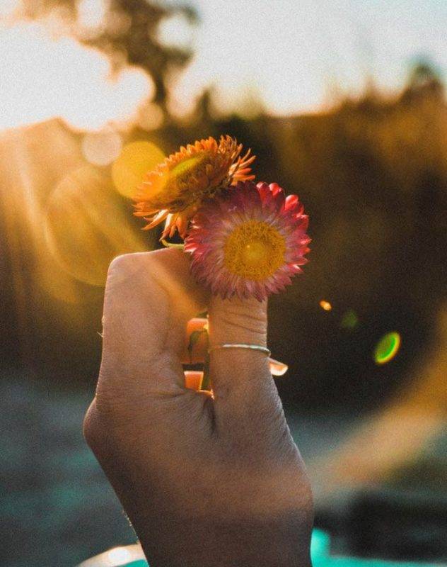 Have An Attitude of Gratitude With These 4 Proven Practices